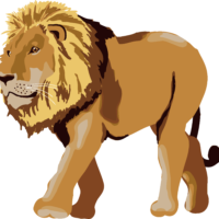 四つ足歩行のライオン